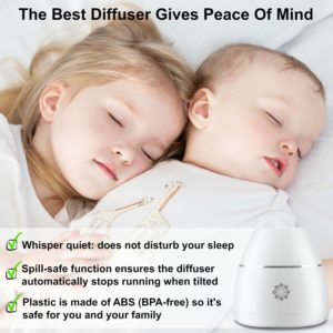 Aennon Nebulizing diffuser