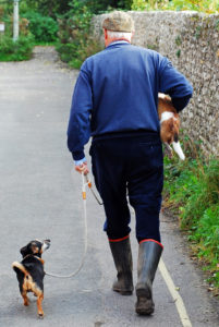 Walking dog and relaxing